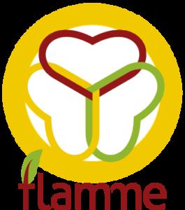 Logo-Flamme-Haut