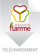 Download-Flamme